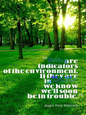 ... Are In Trouble We Know We'll Soon Be In Trouble - Environment Quote