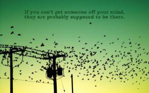 birds quotes silhouette power lines 1680x1050 wallpaper Animals Birds ...