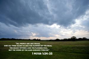 Peter 1.24 25 Bible Verse