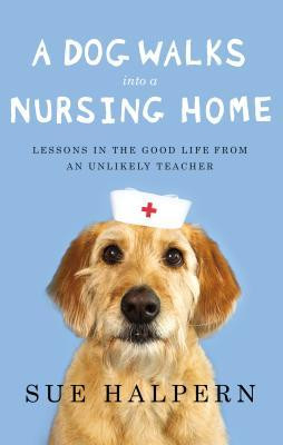 Use NursingLink's School Finder to locate schools online and in your ...