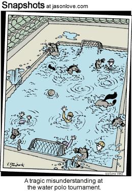 ... Funny Stuff, Swimming Quotes, Funny Posters, Sports Stuff, Aquatic