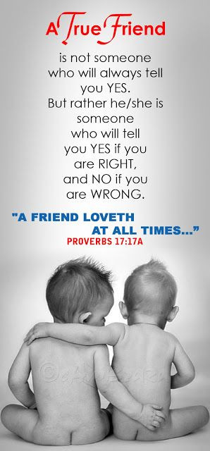 Bible Verses About True Friendship Cambraza: a true friend.