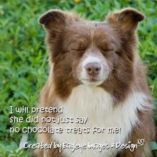 about dog sweet quotes
