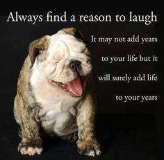 Baggy Bulldogs | Facebook