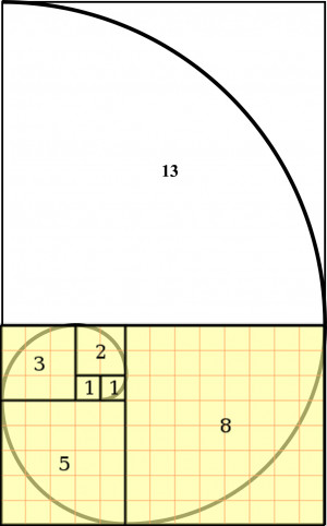 The Fibonacci spiral and number sequence on graph paper by the helpful ...