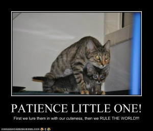 funny pictures - PATIENCE LITTLE ONE!
