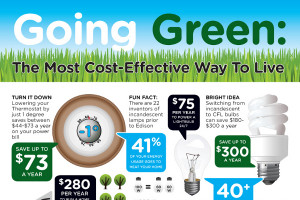 List-of-47-Popular-Go-Green-Slogans-and-Catchy-Taglines.jpg