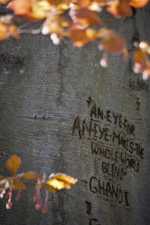 Carved Quote Photograph
