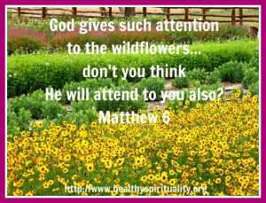 Healthy Spirituality: Texas Wildflowers Lessons