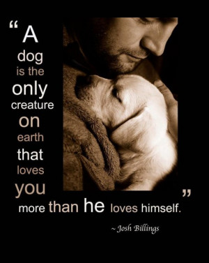 Dog Quotes Wallpapers