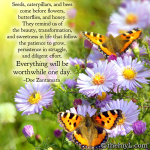 Seeds, caterpillars, and bees come before flowers, butterflies, and ...