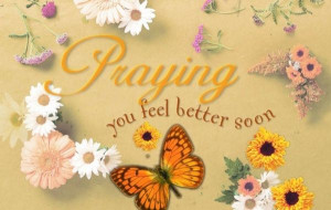 Get Well Soon Messages Religious   Get Well Flowers (KJV) Postcard 25 ...