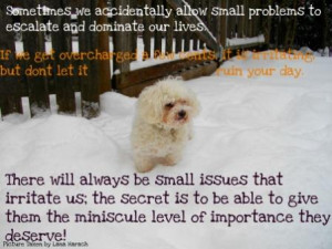 Quoteko Faithful Dog Quotes