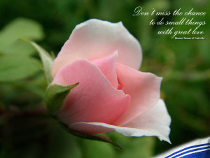 Mother Teresa Quotes Wallpapers Mother teresa quotes