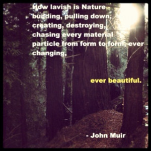John Muir Quote 38 ... I love California and it's relationship to him ...