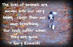 ... Pet Grief, Grief For A Dogs, Grief Pet Dogs And Cat, Dogs Death Quotes