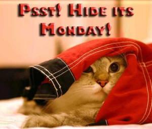 http://www.db45.com/monday/psst-hide-its-monday/