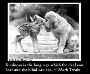 wisdom-quotes-kindness