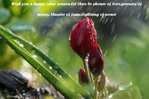 Monsoon Rain with quote wallpaper