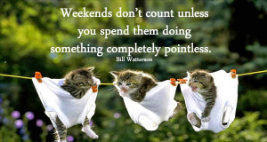 Weekend Quotes : Have Superb Weekend