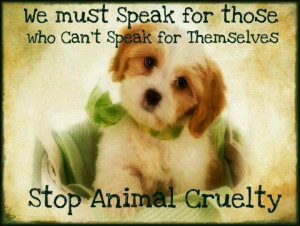 Stop animal cruelty | cute animals