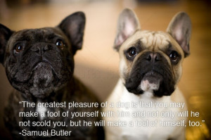 The Greatest Pleasure of a Dog – Animal Quote