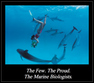 Marine Biologists