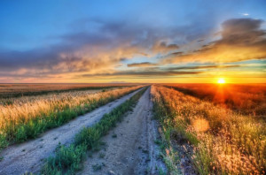 Caminos de tierra en el medio de la nada