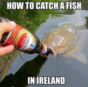 Funny 2014 How to Catch A Fish in Ireland