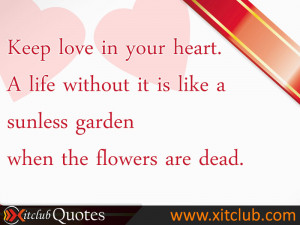Most Popular Love Quotes
