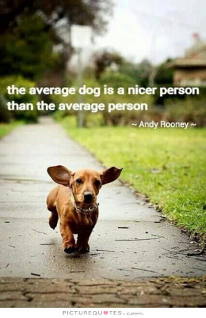 The average dog is a nicer person than the average person Picture ...