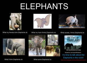 Help Save Elephants with