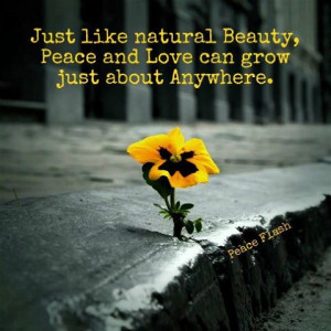 Nature Love Quotes Sayings