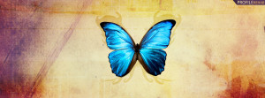 Blue Butterfly Facebook Cover Preview