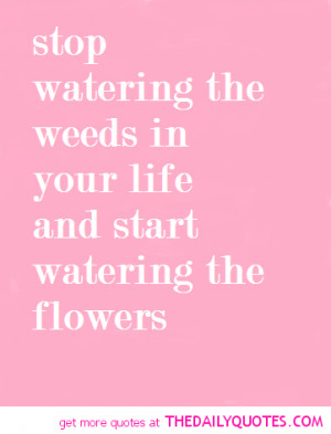 Weed Poems And Quotes Stop watering the weeds