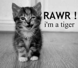 RAWR! I'm a tiger... ;)