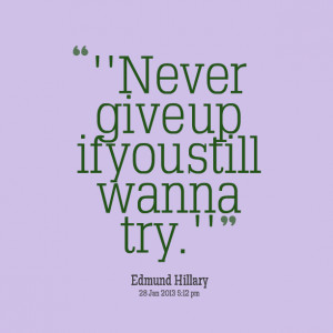 Quotes Picture: ''never give up if you still wanna try''