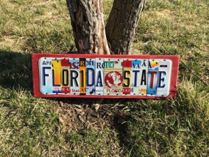 Football Quotes, States Seminoles, Fsu Noles, Florida State University ...