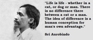 Sri aurobindo famous quotes 3