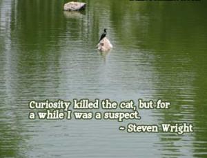 Curiosity Quotes