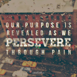 Our purpose is revealed as we persevere through pain.