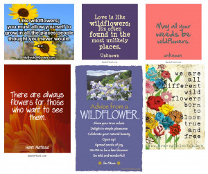 WildFlowers Quotes