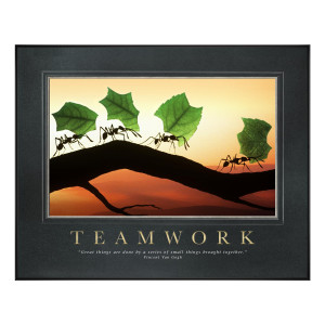 Teamwork Ants Motivational Poster Classic (734977)