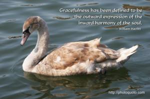 Sayings, Quotes: William Hazlitt