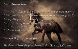 Inspirational Horse...