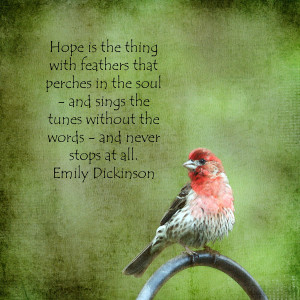 Hope Is The Thing With Feathers That Perches In The Soul ~ Birds Quote