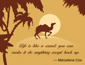 Life is like a camel: you can make it do anything except back up.