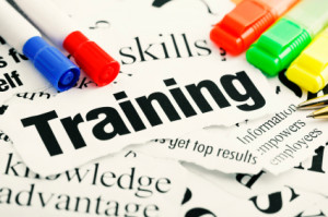 Using Procedure Software for Employee Training