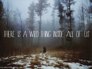 Quote adapted from: Where the Wild Things Are movie sloganPhoto found ...