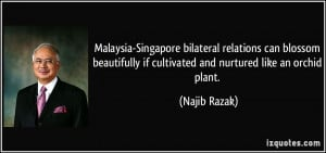 if cultivated and nurtured like an orchid plant Najib Razak